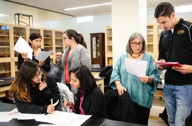 PHO-UMC13-31 Human Osteology Class